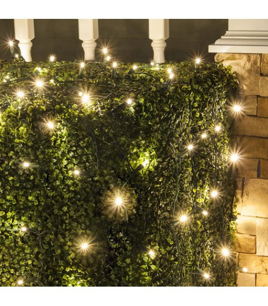 CLU72520 TWINKLE   4 ft x 6 ft Net Light Set with 100 WARM WHITE LED lights & Green Wire