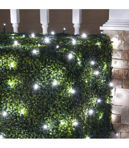 CLU72522 TWINKLE   4 ft x 6 ft Net Light Set with 100 COOL WHITE LED lights & Green Wire