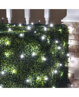 CLU72510  4 ft x 6 ft Net Light Set with 100 Cool White LED lights & Green Wire