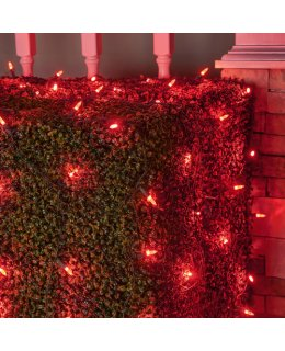 CLU72502 4 ft x 6 ft Net Light Set with 100 RED LED lights & Green Wire