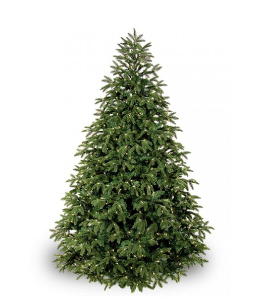 CLP7309  4.5 FT Prelit Warm White LED FRASER FIR Christmas Tree, 150 light count 10 YEAR WARRANTY