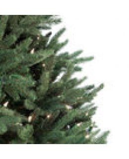 CLP7315  LED 6.5 FT Prelit Warm White NOBLE FIR Christmas Tree, 600 light count 10 YEAR WARRANTY